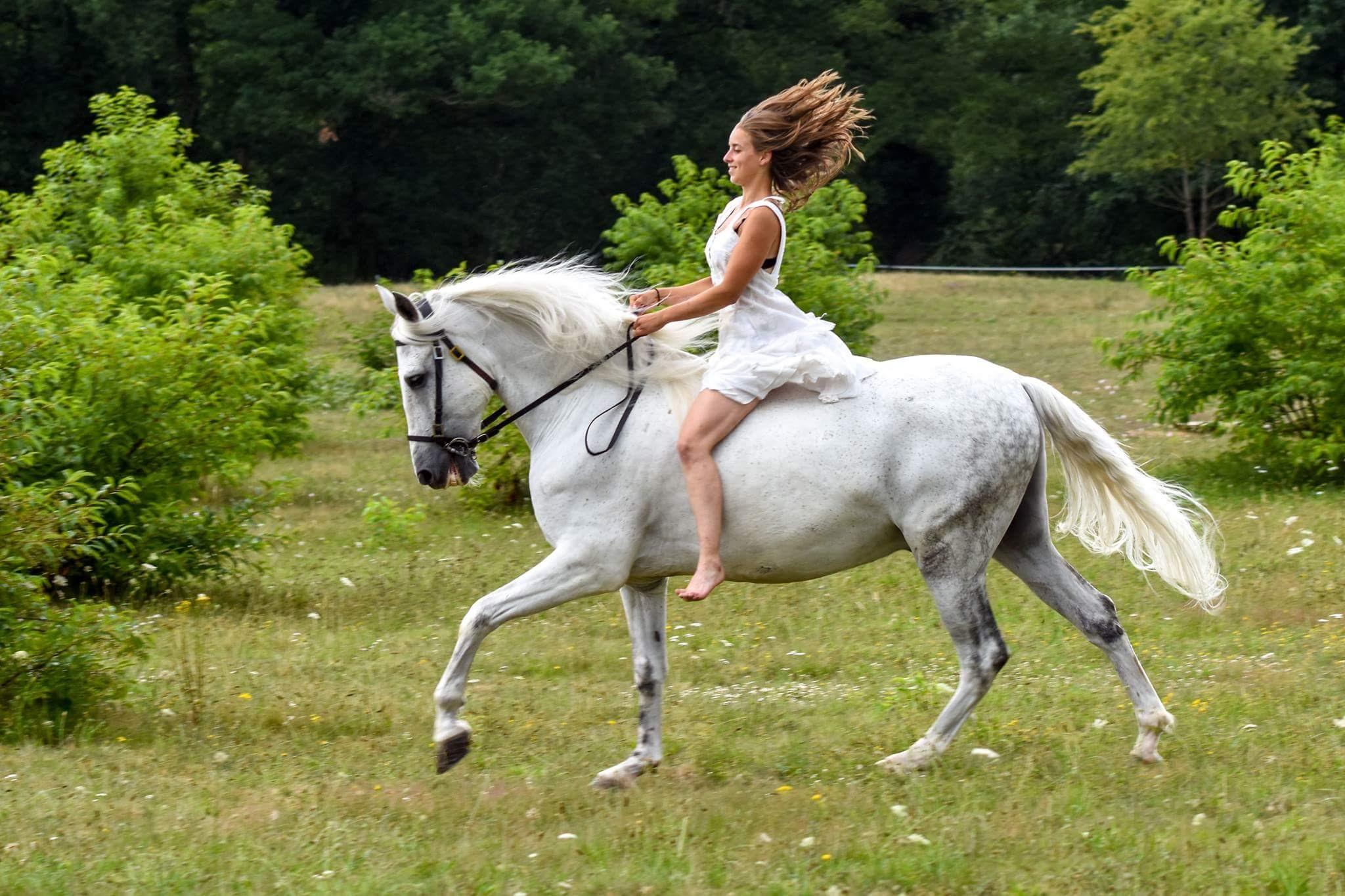 balade à cheval pendant un evjf dans une propriété en Sologne